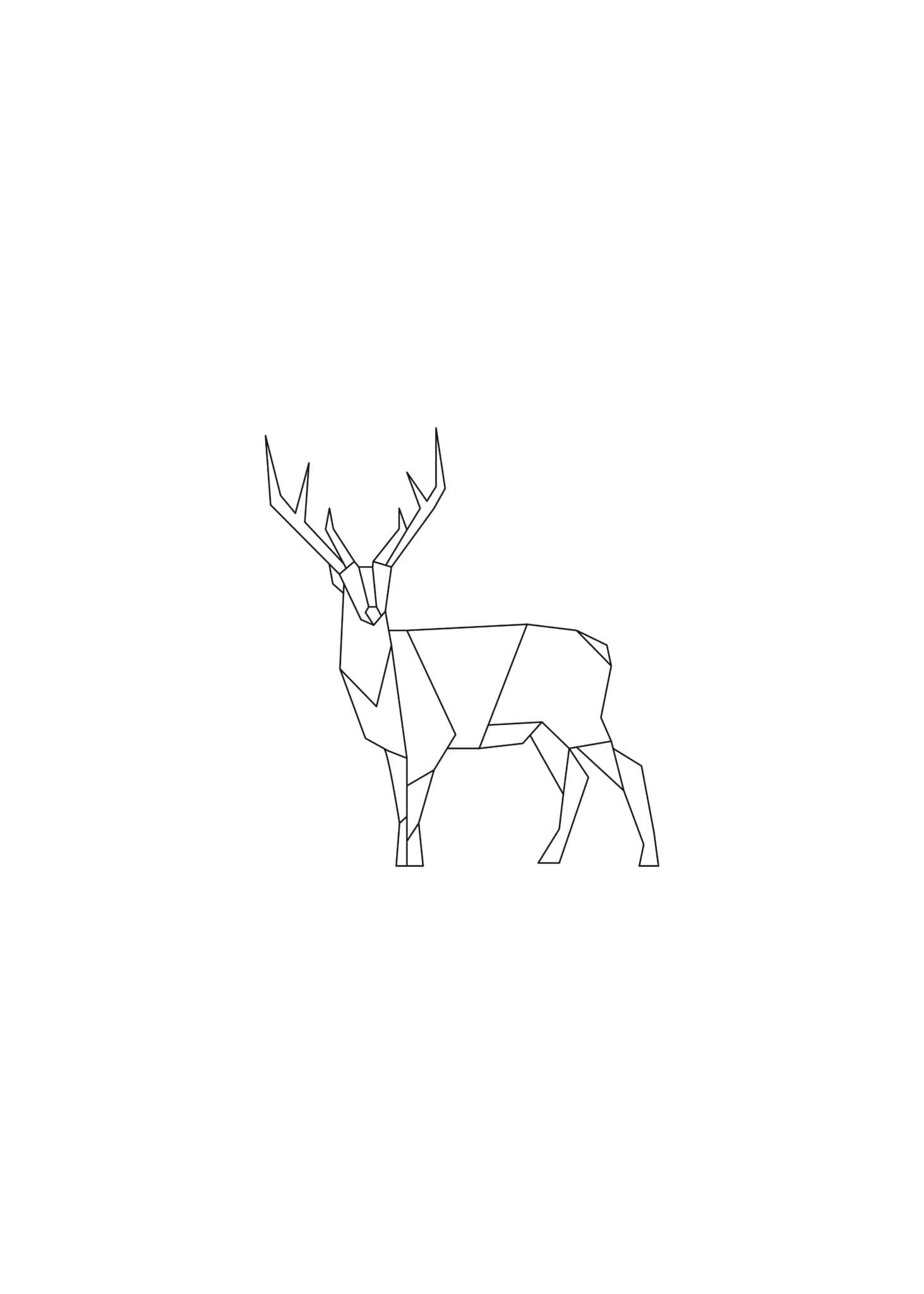 Lined Reindeer