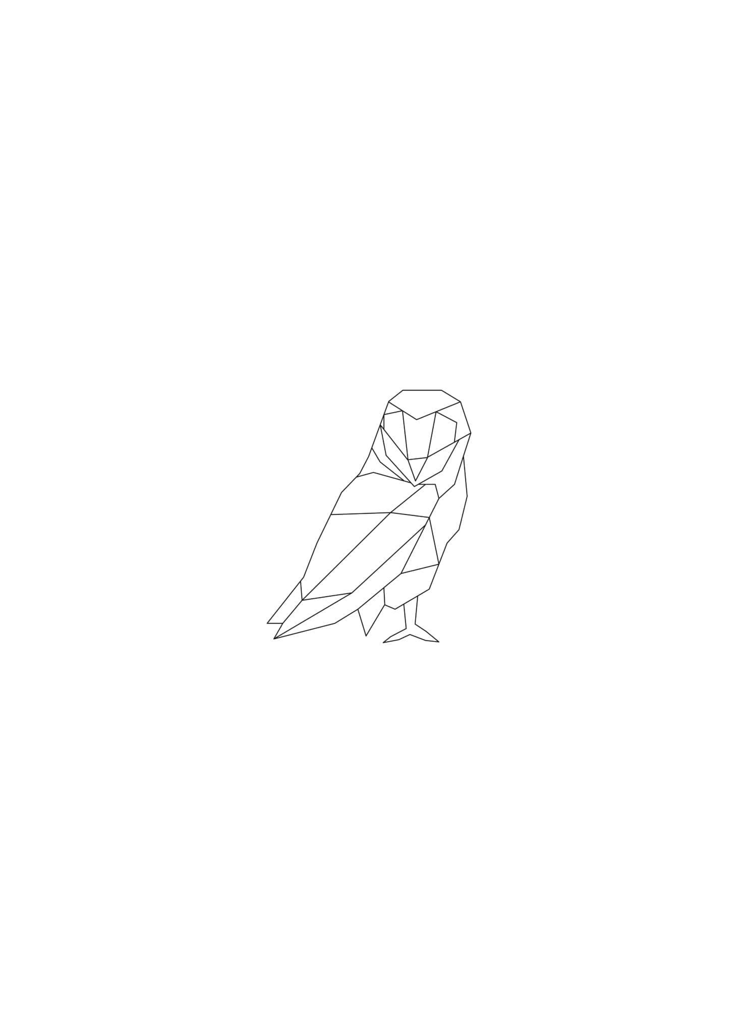 Lined Owl