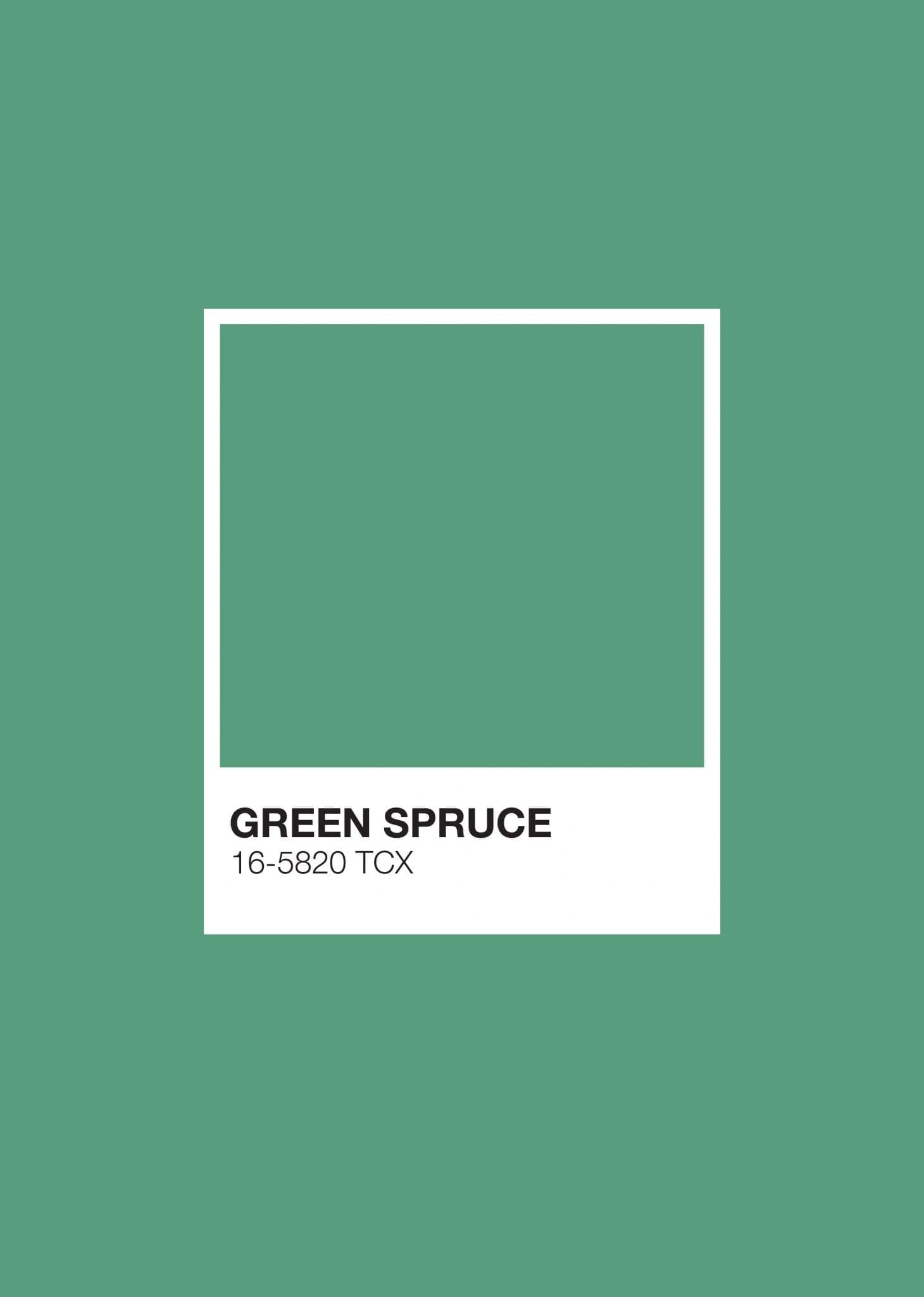 Earth Pantone: Green Spruce
