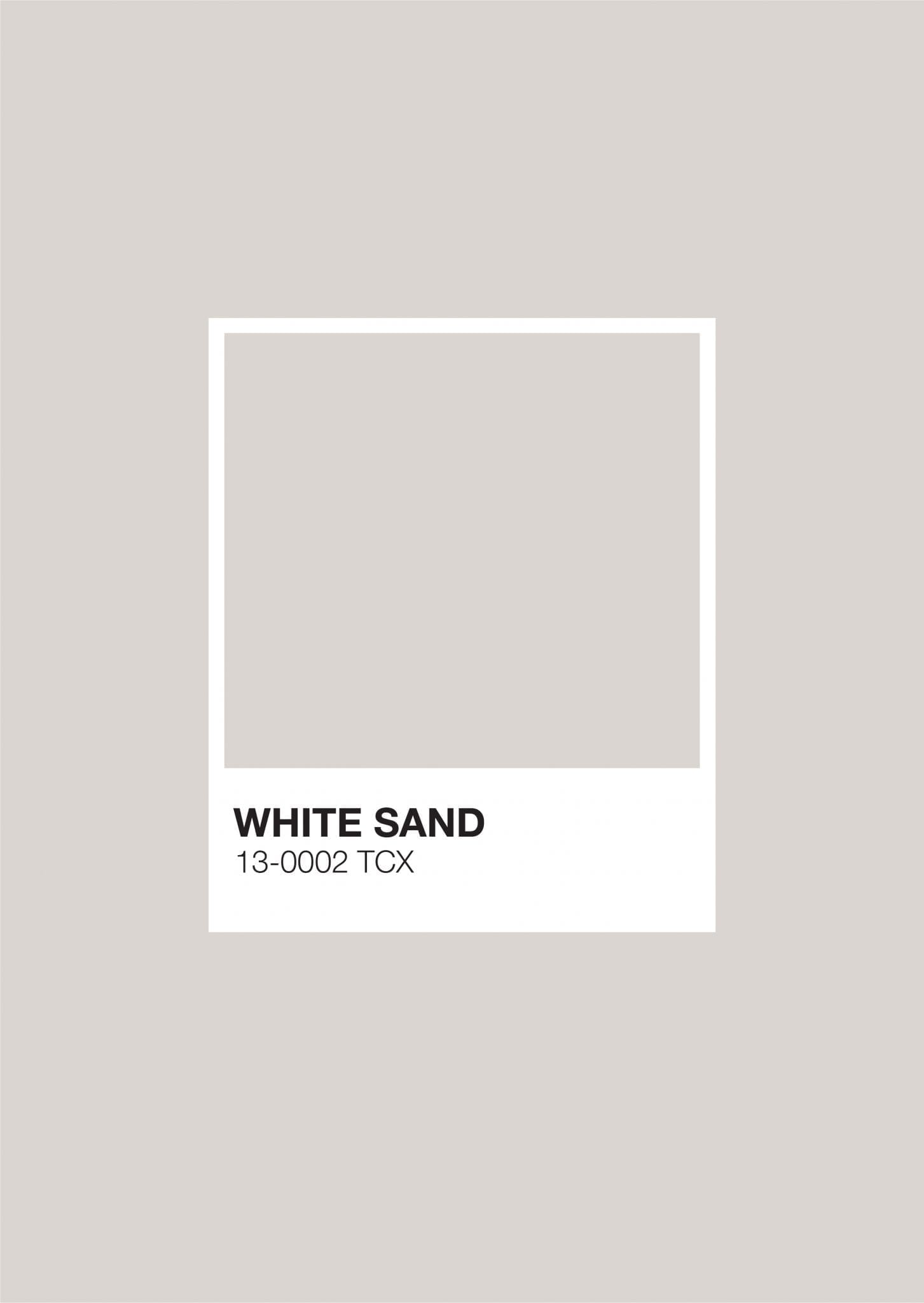 Earth Pantone: White Sand