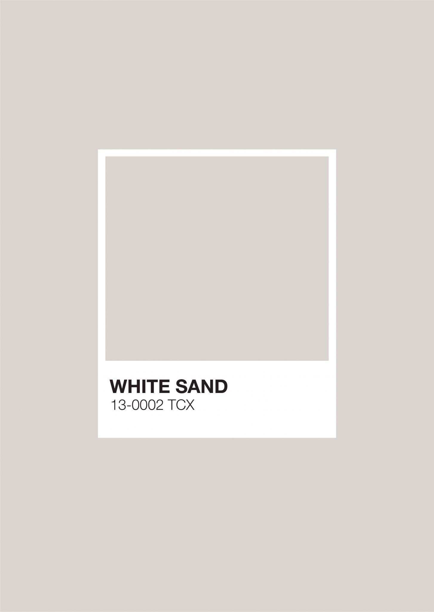 Earth Pantone: White Sand