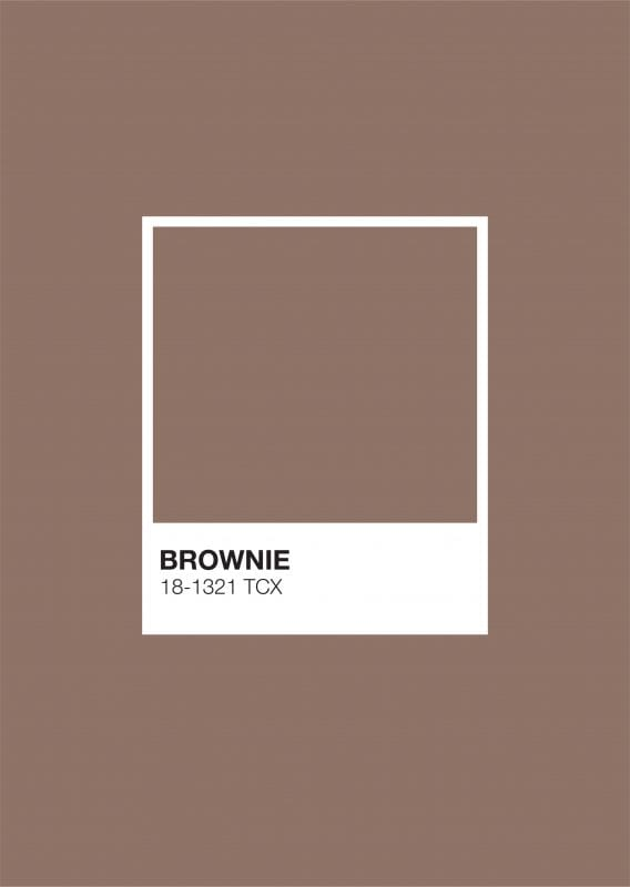 Earth Pantone: Brownie