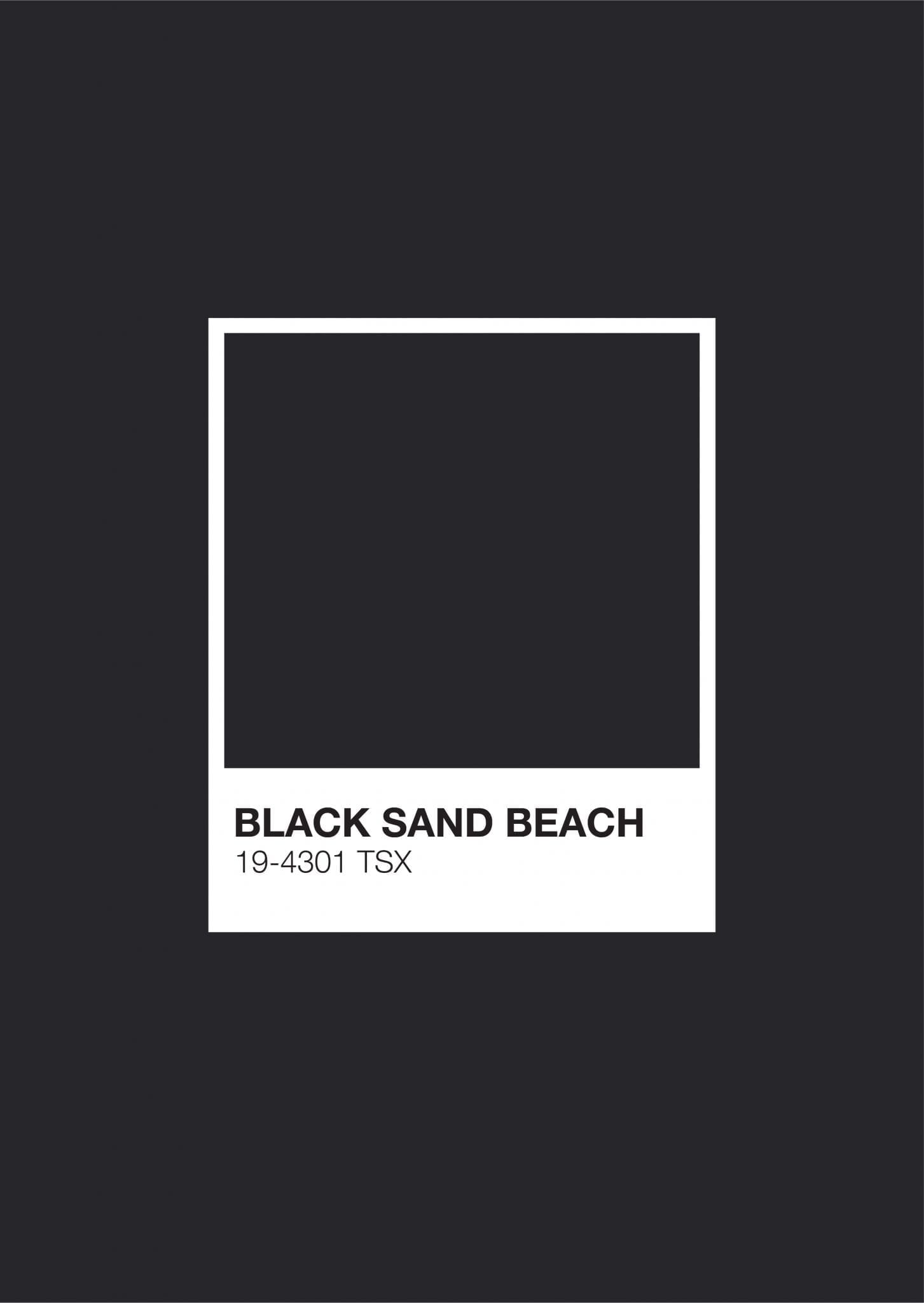 Iceland Pantone: Black Sand Beach