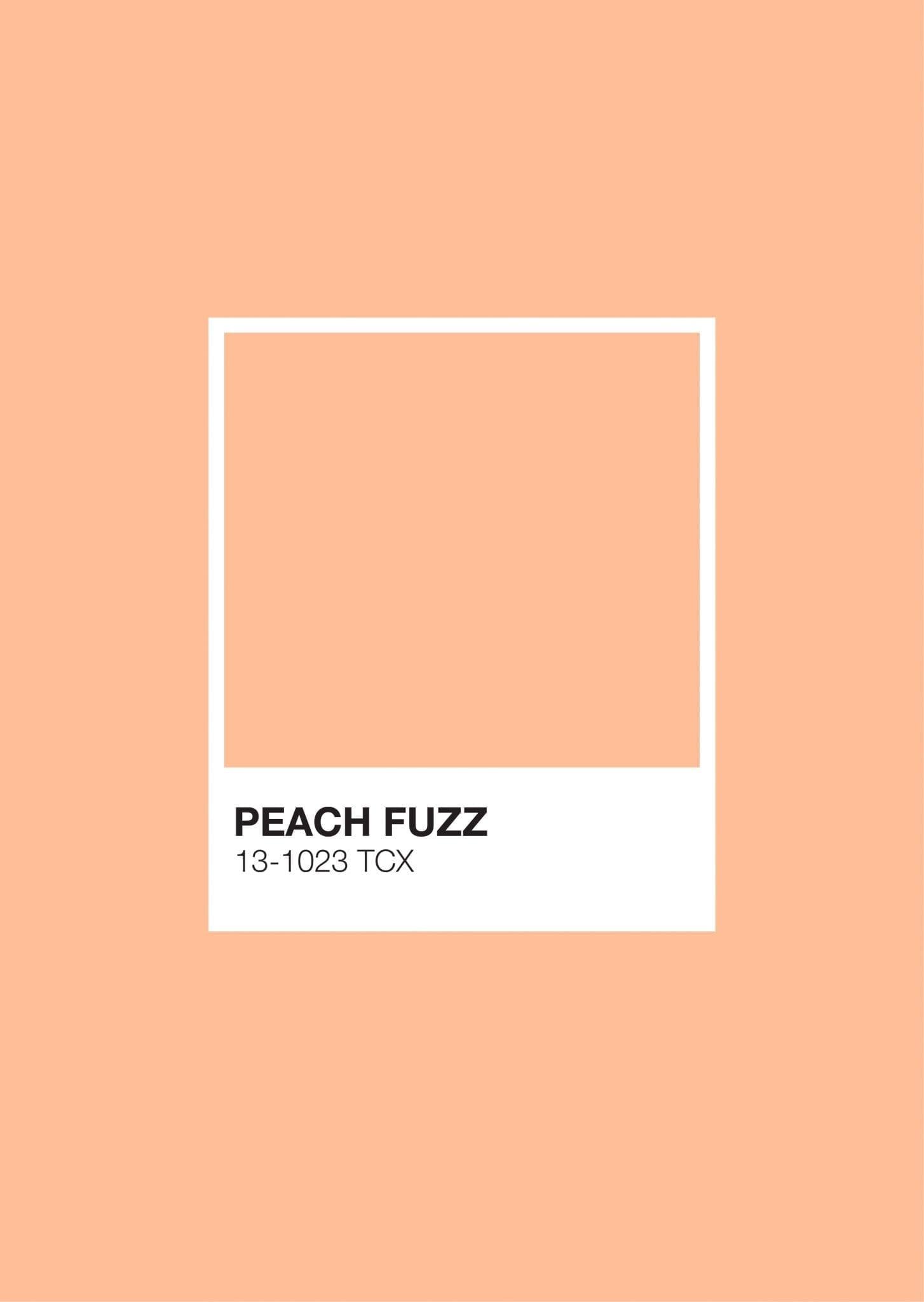 Pastel Pantone: Peach Fuzz