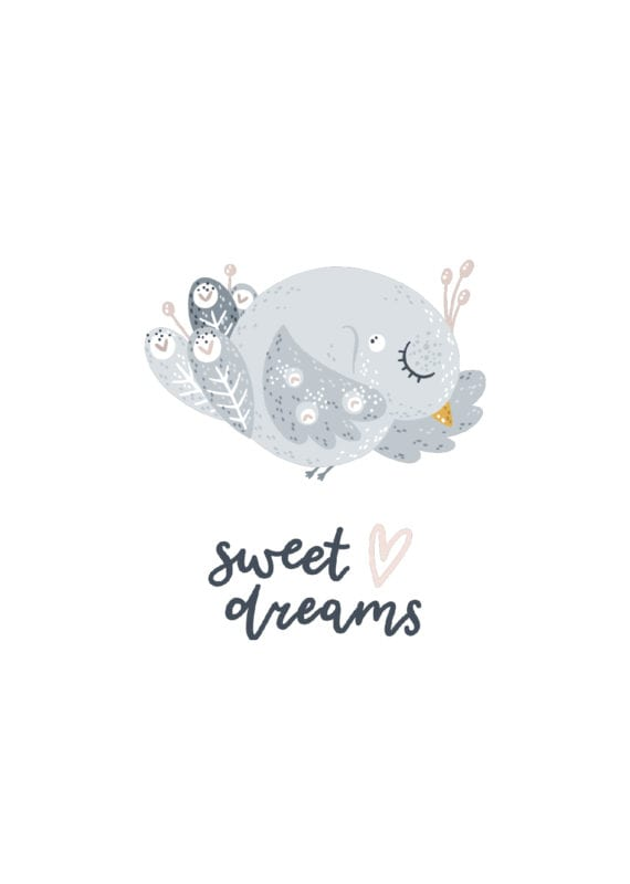 Sofandi fugl – Sweet dreams